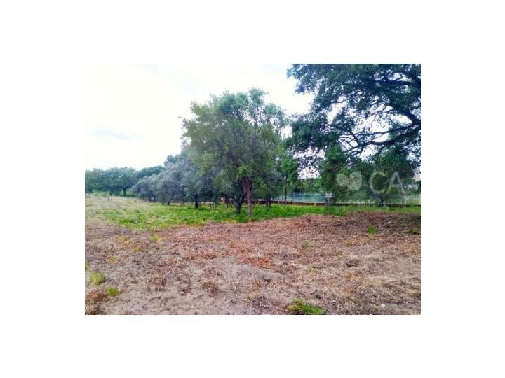 Lote de terreno destinado a construção com 300m², situado na Urbanização Alto das Vinhas em Sesimbra