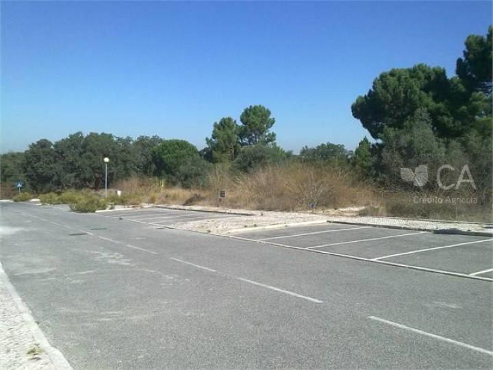 Terreno destinado à construção com 302 m2 localizado em Sesimbra