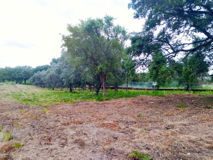 Lote de terreno destinado a construção com 302m², situado na Urbanização Alto das Vinhas em Sesimbra