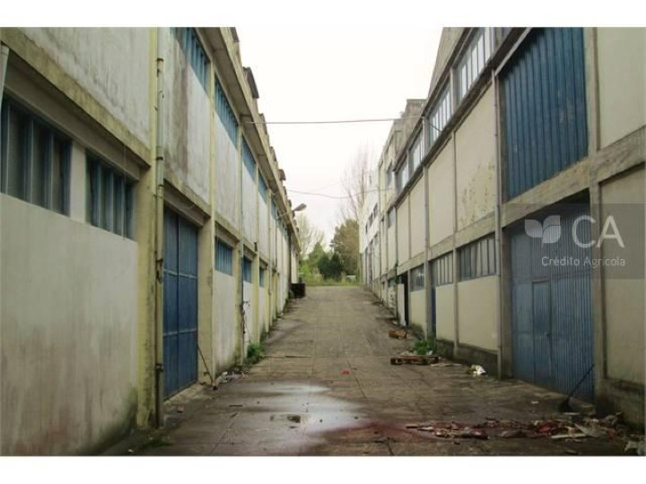 Set of two buildings for the industry with a total area of 8739.50 m2, located on Paranhos municipality of Porto